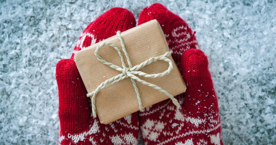 Una buena opción para estas navidades, las franquicias de mensajería, mundoFranquicia