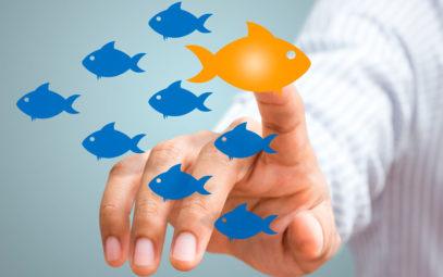 Competencia en franquicia, triunfar en franquicia, franquiciadores, consejos franquicia, franquicia