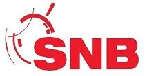 Logo SNB Solo Neumáticos Baratos