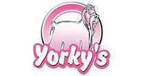Logo Yorkys