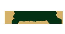 Logo Asfa21