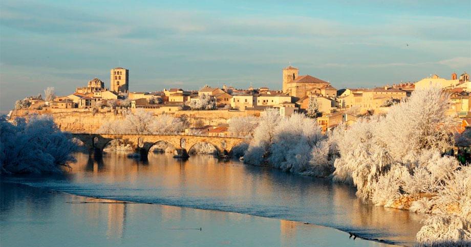 Zamora, franquicias, como